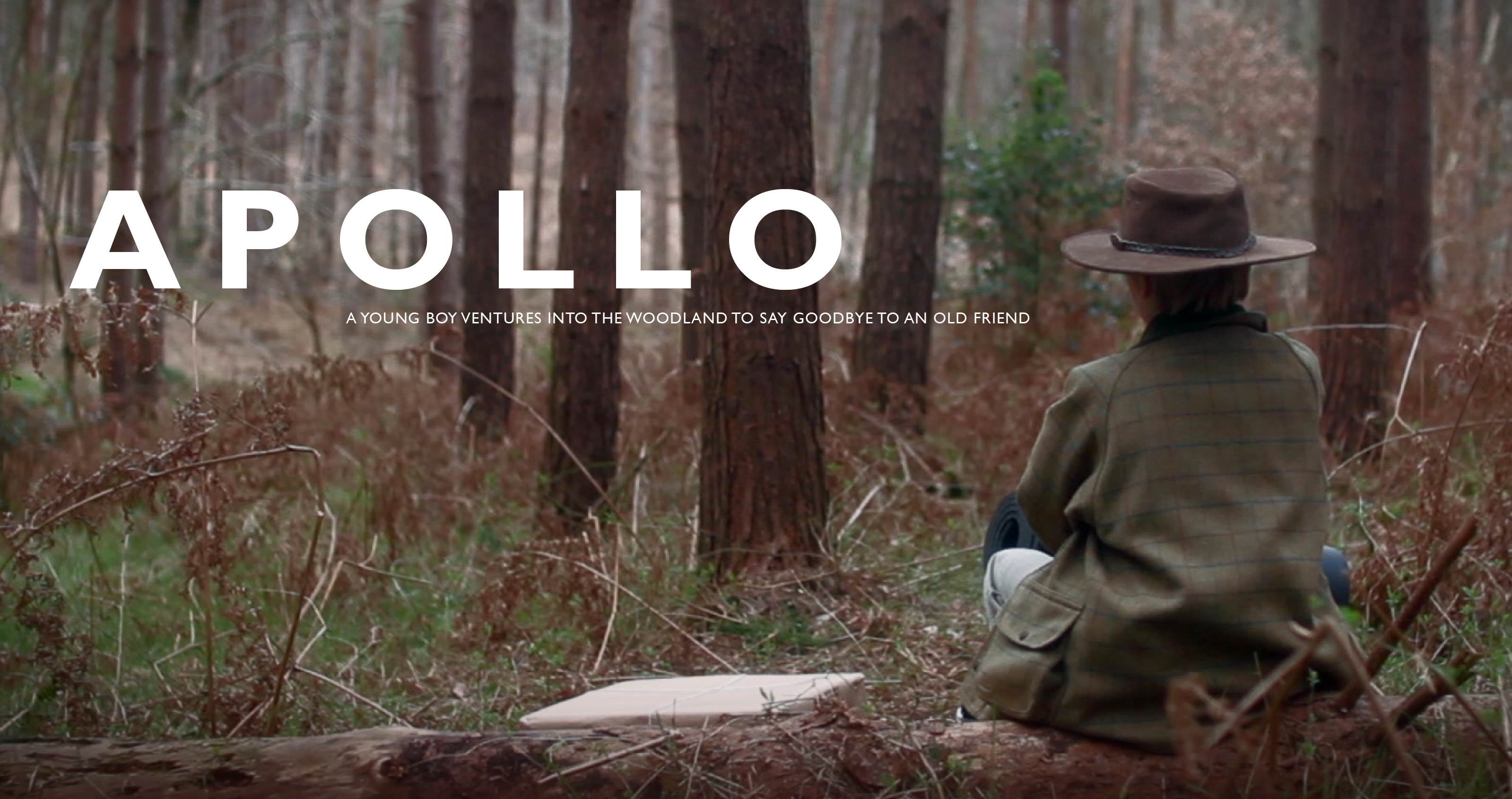 apollo-poster
