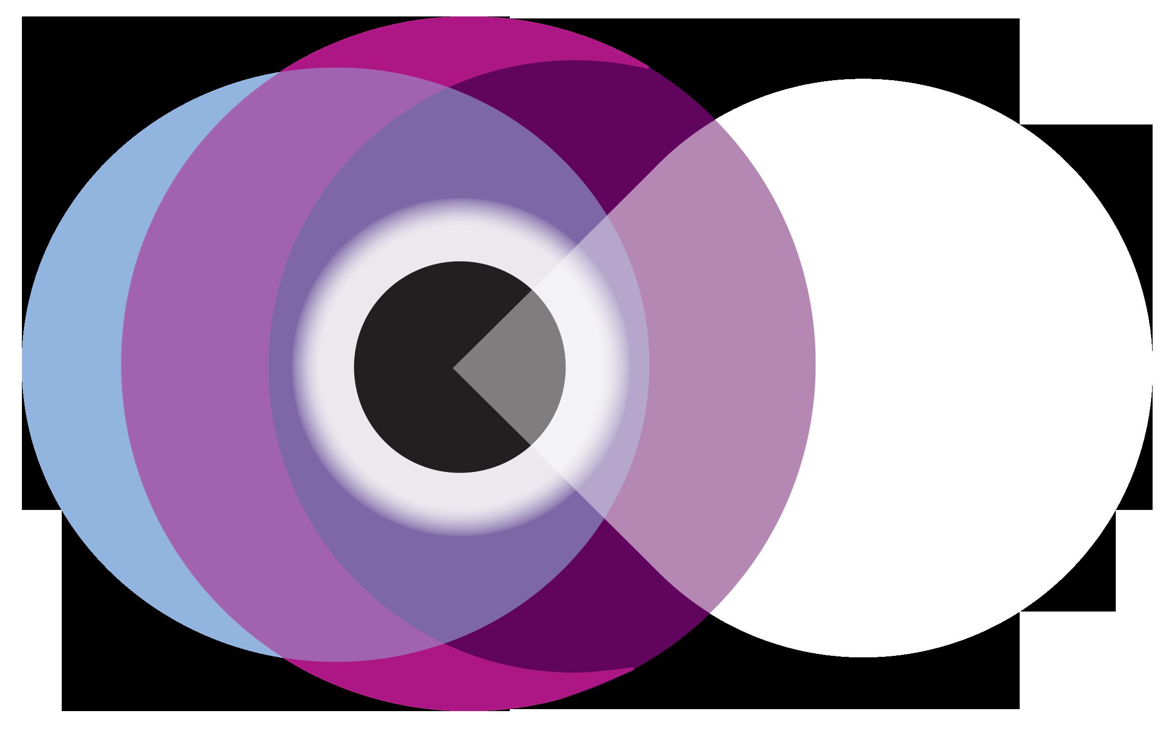 ws-2016-logo-no-background